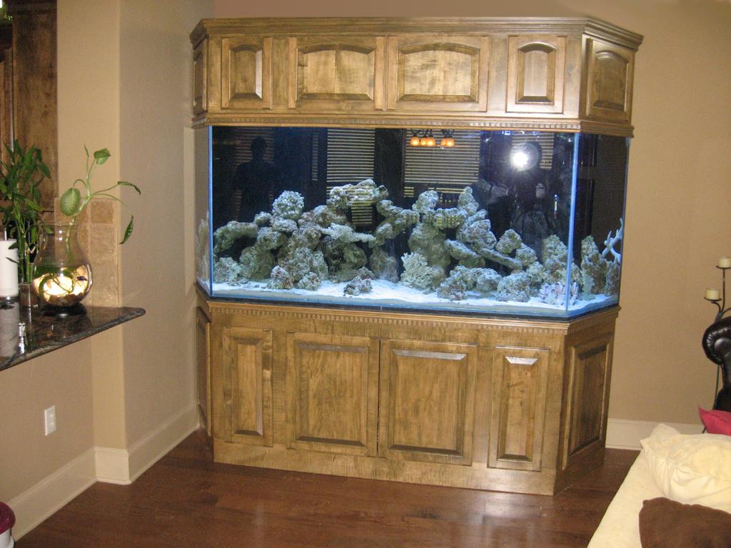 Aquarium Cabinet : Aquarium Cabinet